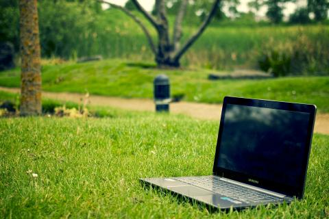 Work from anywhere - with Qdos